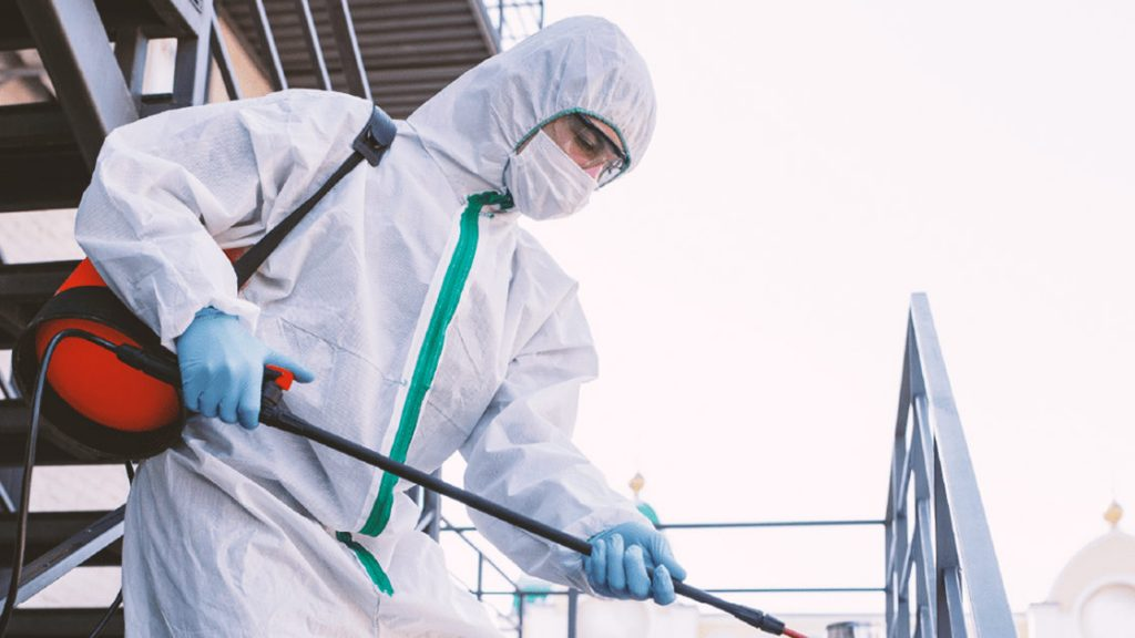 Control de plagas en Tenerife con profesionales para evitar el envenenamiento por plaguicidas