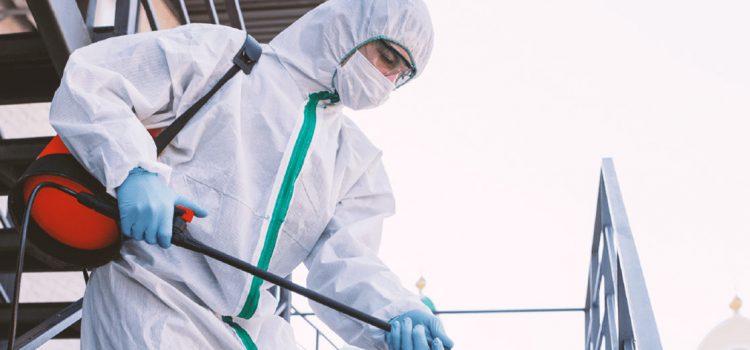 ¿Cómo evitar el envenenamiento por plaguicidas?
